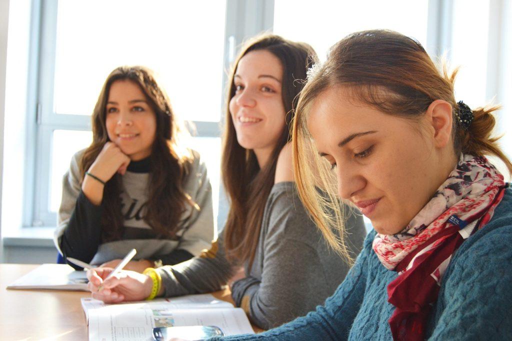 language school, team, interns
